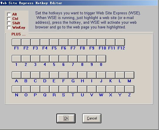 Web Site Express