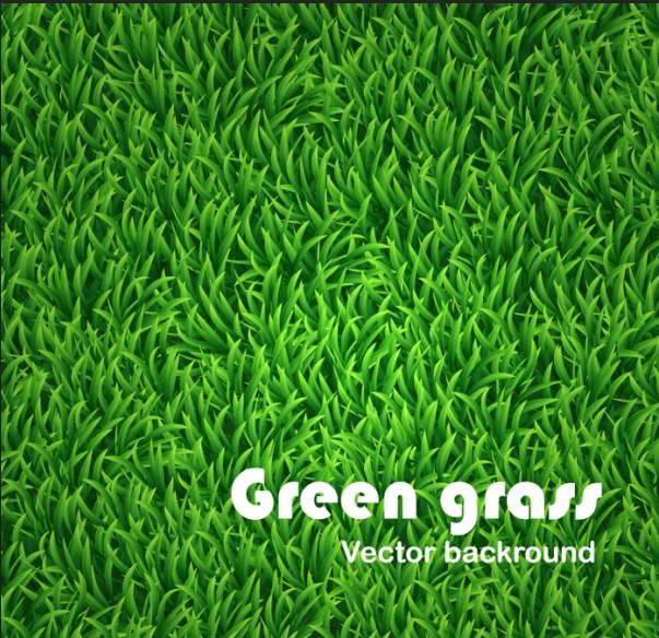 绿草矢量背景模板矢量素材