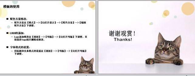 宠物护理ppt模板_宠物护理ppt模板下载