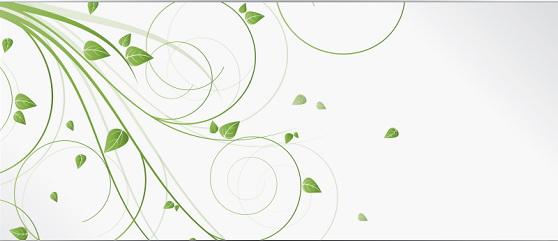 绿色植物花纹横幅模板设计官方下载|绿色植物花纹
