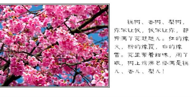 春天朗诵PPT模板