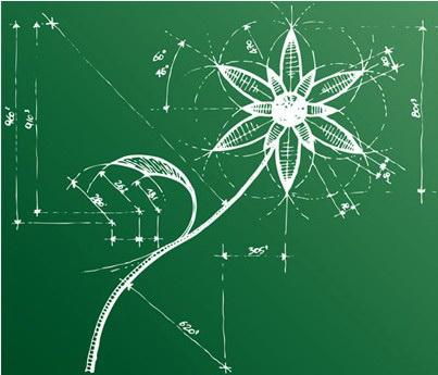 花朵描绘图素材