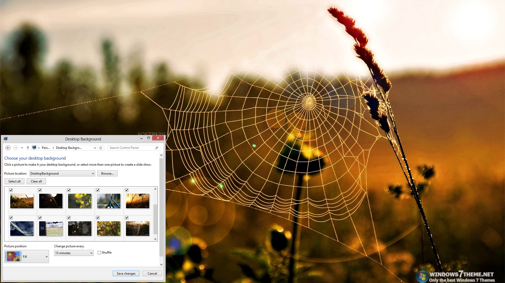 Cobweb Windows 7 Theme