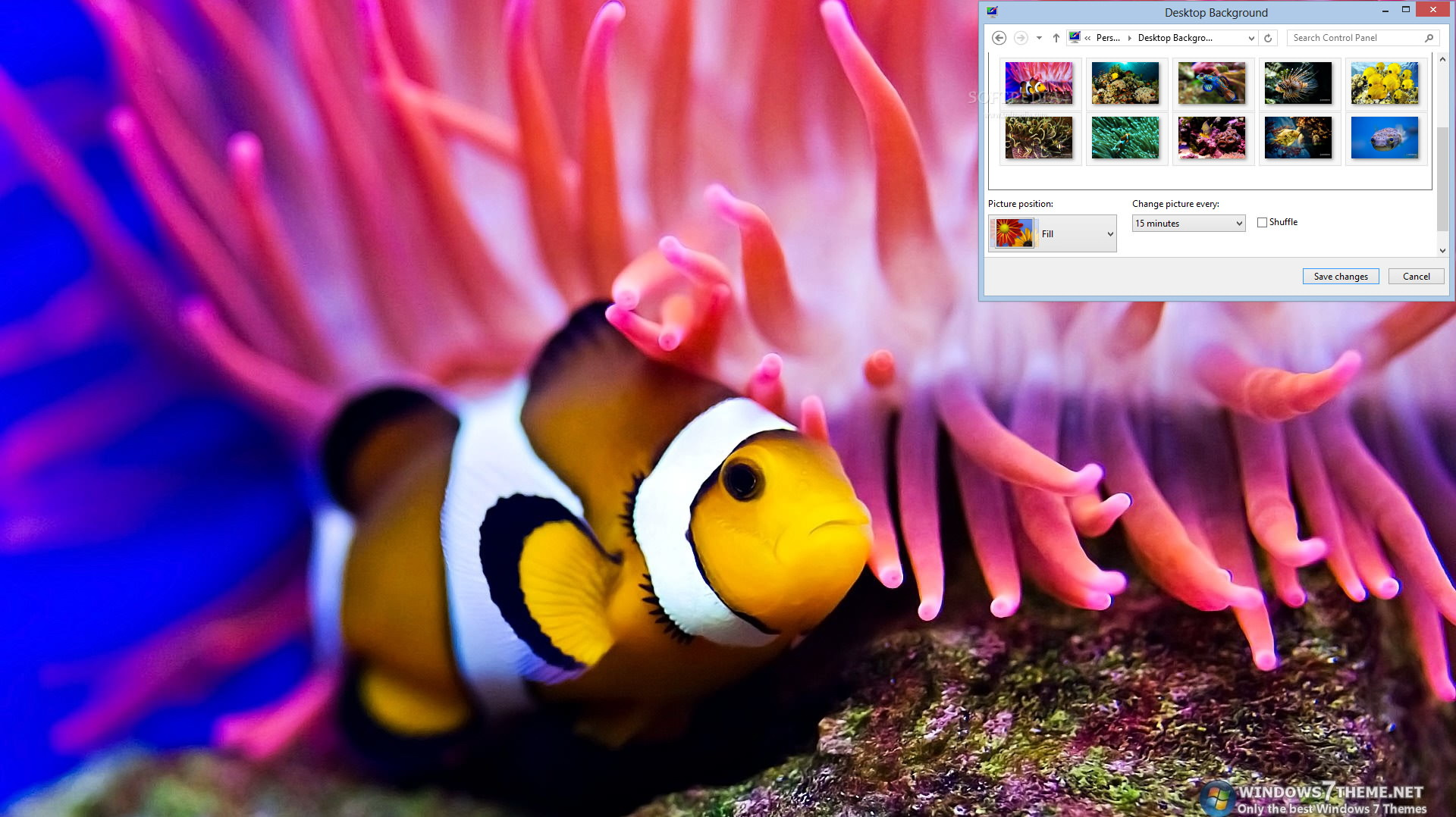 Coral Fish Windows 7 Theme
