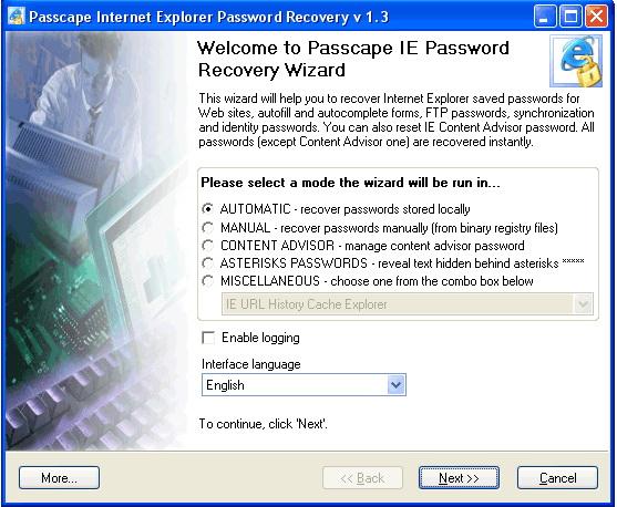 Internet Explorer Password Recovery