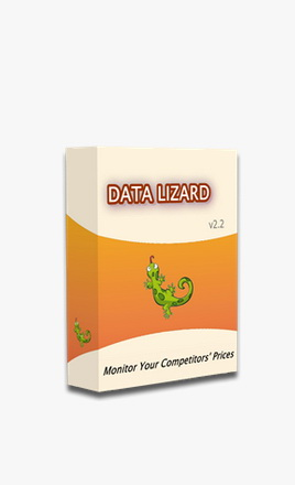 Data Lizard
