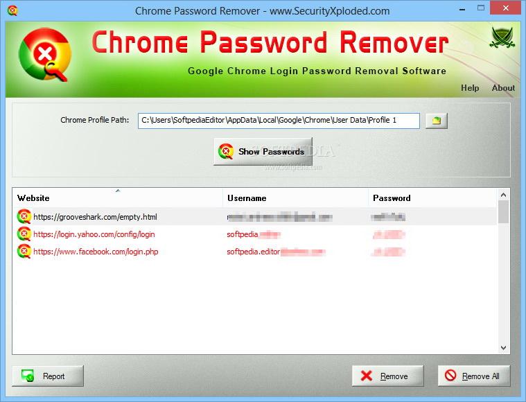 Chrome Password Remover