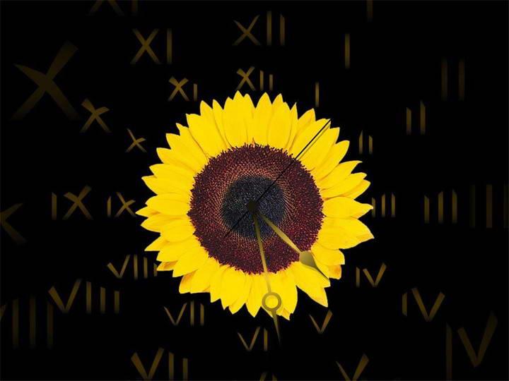 Sunflower Clock screensaver