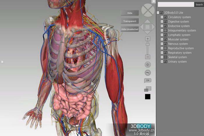 3DBody三维交互解剖软件
