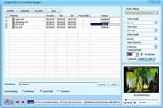 DDVideo SWF to AVI/MPEG Converter Standard 5.1