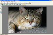 POS FREE PHOTO EDITOR 1.60