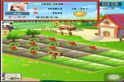 91农场 iPhone 1.6 正式版