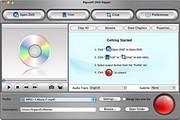 Bigasoft DVD Ripper For Mac 3.2.3.4772