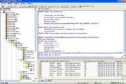 网际数据库浏览器 2010
