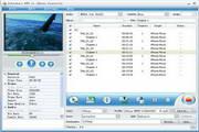 Joboshare DVD to iPhone Converter For Mac 3.5.5.0509