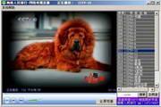闽南e族-网络电视直播系统