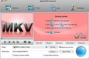 Bigasoft MKV Converter For Mac 3.7.50.5067