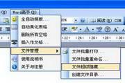 Word高手 1.9.212