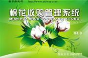 潘多拉棉花收购管理系统