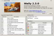 Wally  For Linux
