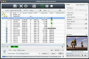 4Media DVD to iPod Converter For Mac 6.0.3.0521