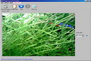 CamShot 3.2.5 Build 195