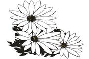矢量花朵素材89
