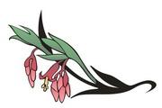 矢量花朵素材104