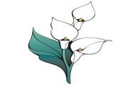 矢量花朵素材79