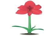 矢量花朵素材133