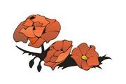 矢量花朵素材109