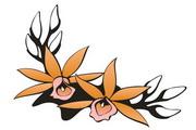 矢量花朵素材108
