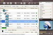 4Media DVD Ripper Ultimate for Mac 7.0.0.1121