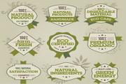 自然绿色标签矢量素材