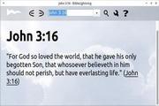 BibleLightning For Linux 20140614