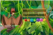 蝙蝠吃水果对对...