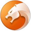 金山猎豹安全浏览器
