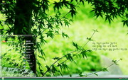PCTheme韩国圣经护眼风景xp主题 1.6.0.3
