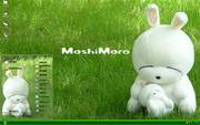 草地流氓兔可爱...