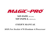 辉煌MP-P6PE-L主板英文版说明书