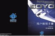 Soyo梅捷SY-A8VE-RL主板简体中文版说明书