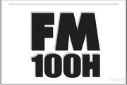 Fender FM 100 Head说明书
