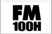 Fender FM 100H说明书