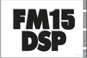 Fender FM 15 DSP说明书