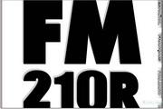 Fender FM 210R说明书
