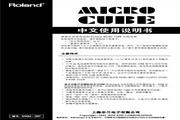 罗兰 Micro Cube-R 吉他音箱说明书