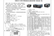 飞扬XMC616型温差控制仪说明书