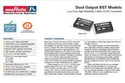 C&D西恩迪BST系列模块电源产品说明书