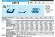 COSEL科索CBS100481R8模块电源产品说明书