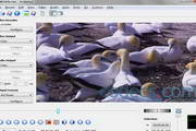AviDemux (x64) 2.6.11 beta 1